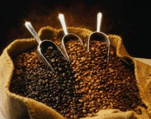 Coffee (97)