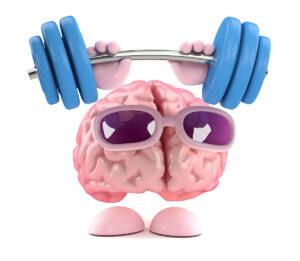 brain_heili