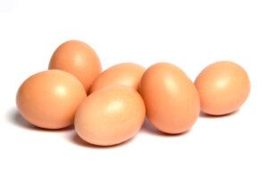 egg_nokkur