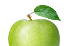kolvetni og epli